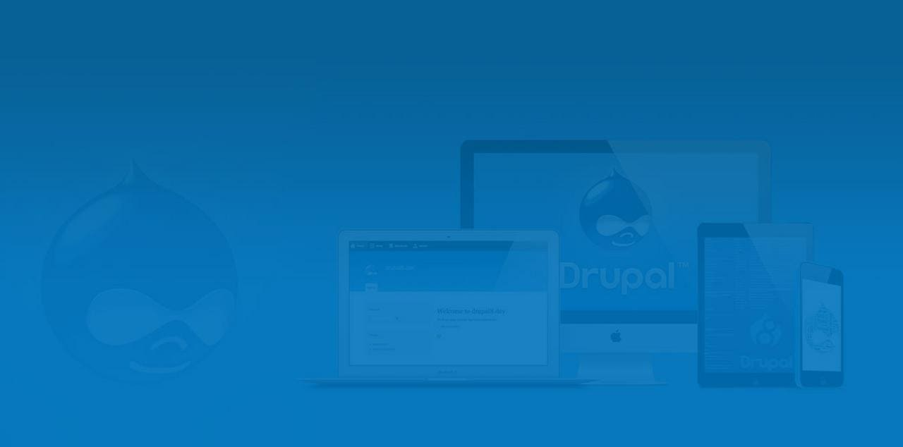 Put Drupal Development To Work For You